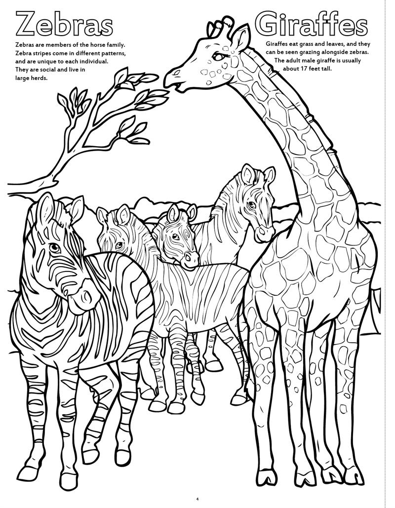 Coloring Book Publishers | Zoo Animals Big Coloring Book