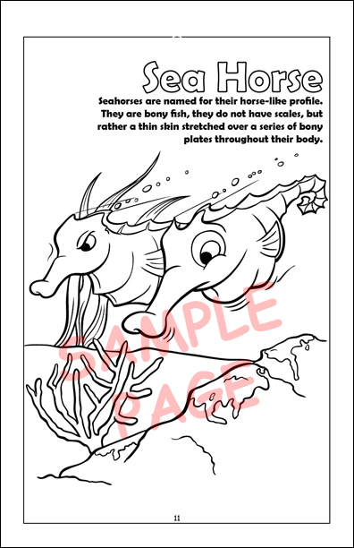 Coloring Book Publishers | Sea Creatures Coloring Book