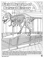 Chicago 'the Windy City' Coloring Book - Field Museum