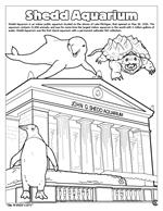 Chicago 'the Windy City' Coloring Book - Shedd