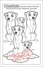 Meerkats Coloring Page